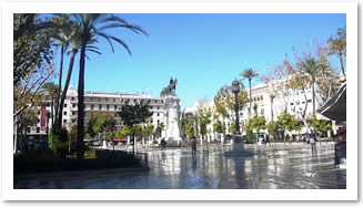 Leafy plaza in Seville